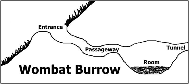 psittacosaurus burrowing   paleontology
